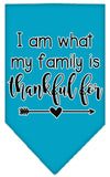 Doggy Stylz Dog-products New Turquoise / Small I Am What My Family Is Thankful For Screen Print Bandana
