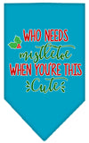 Doggy Stylz Dog-products New Turquoise / Small Who Needs Mistletoe Screen Print Bandana