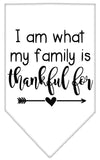 Doggy Stylz Dog-products New White / Small I Am What My Family Is Thankful For Screen Print Bandana