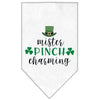 Doggy Stylz Dog-products New White / Small Mister Pinch Charming Screen Print Bandana
