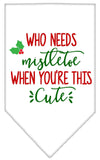 Doggy Stylz Dog-products New White / Small Who Needs Mistletoe Screen Print Bandana