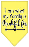 Doggy Stylz Dog-products New Yellow / Small I Am What My Family Is Thankful For Screen Print Bandana