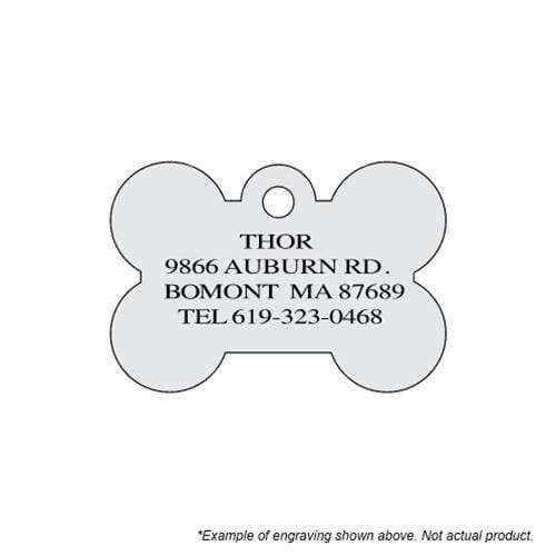 Hillman Group Dog-products NFL Oakland Raiders Bone Id Tag