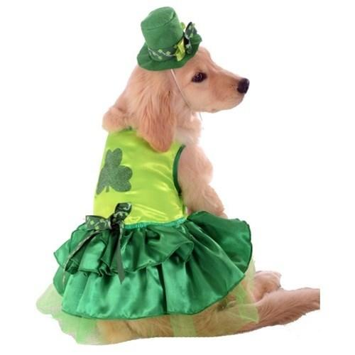 Rubie's Costume Co Dog-products Events & Holidays Large Lucky Dog Pet Costume