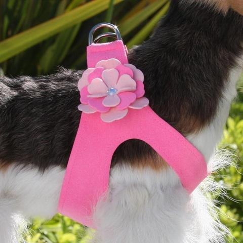 Susan Lanci Dog-products Alexandra Flower Step In Harness