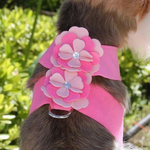 Susan Lanci Dog-products Alexandra Flower Tinkie Harness