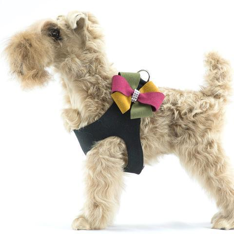 Susan Lanci Dog-products Autumn Bow Step In Harness