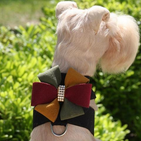 Susan Lanci Dog-products Autumn Bow Tinkie Harness