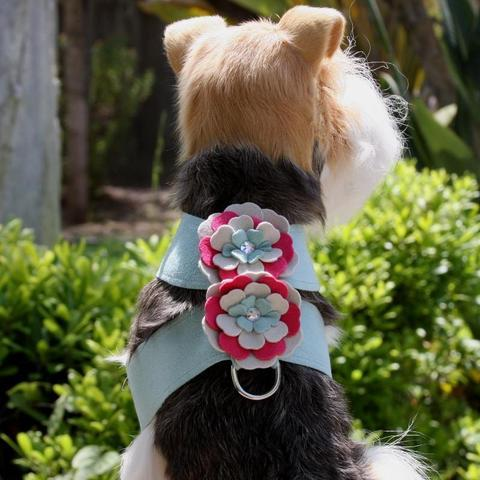 Susan Lanci Dog-products Blossom Flower Tinkie Harness