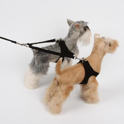 Susan Lanci Dog-products Coupler