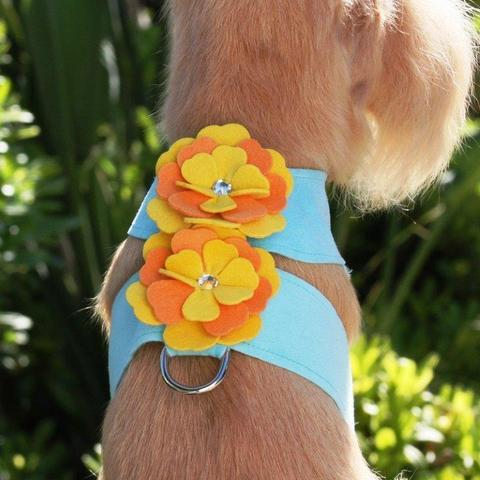 Susan Lanci Dog-products Darla Tinkie Harness