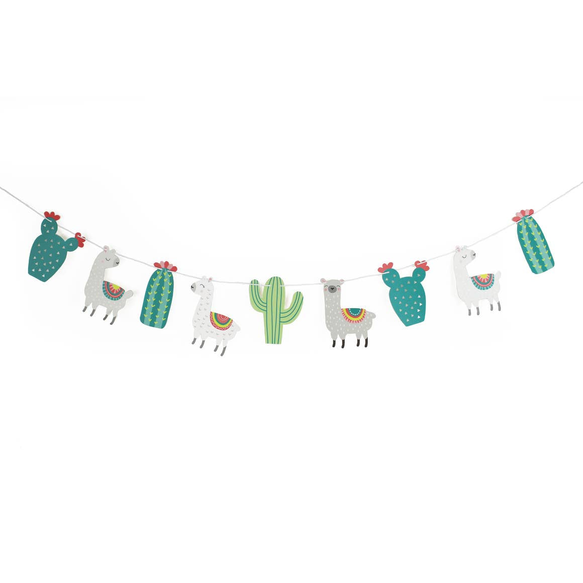 Cactus Party Decor