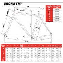 Load image into Gallery viewer, Cinelli Tutto Plus Frameset - BikesonBikes