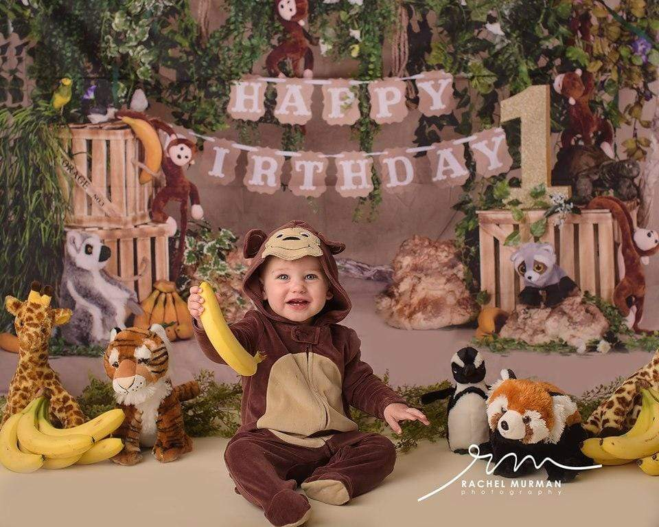 Katebackdrop:Kate Jungle cartoon zoo animals Summer backdrop 1st cake smash designed by studio gumot