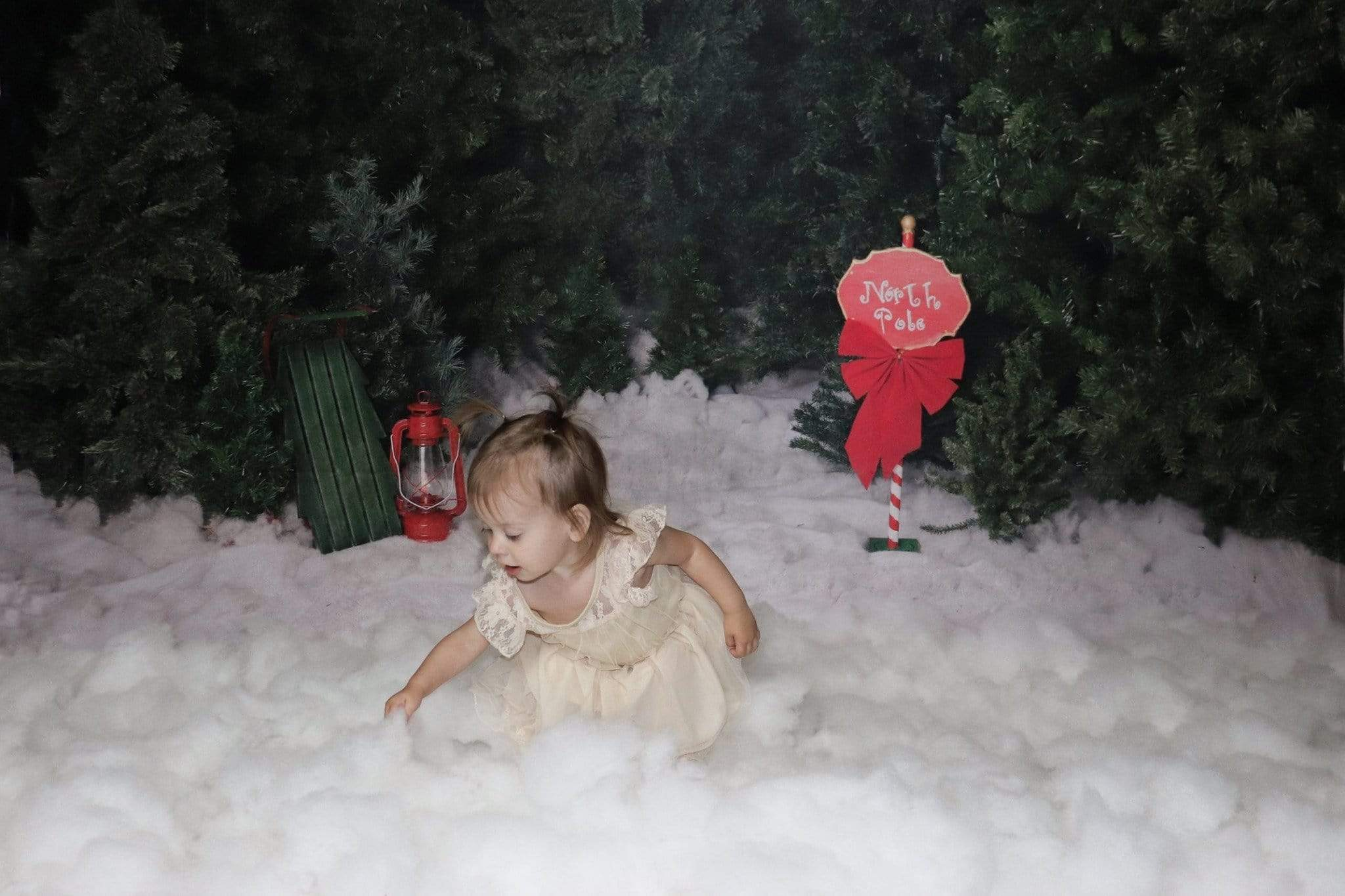 Cargar imagen en el visor de la galería, Katebackdrop£ºKate North Pole Magic Christmas Backdrop for Photography Designed by Jenna Onyia