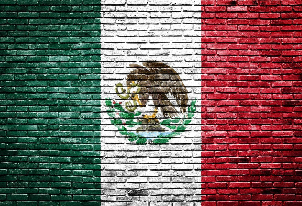 Katebackdrop£ºKate Mexico's National Fag Painted On Bricks for Photography