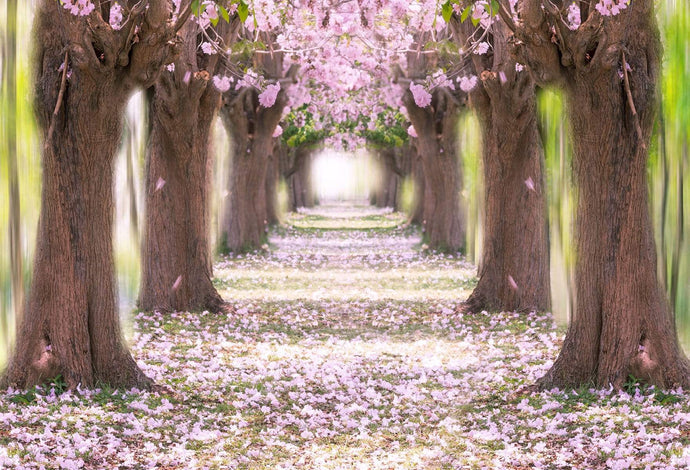 Katebackdrop:Kate Pink Flower Path Backdrop for Wedding Backdrop Spring