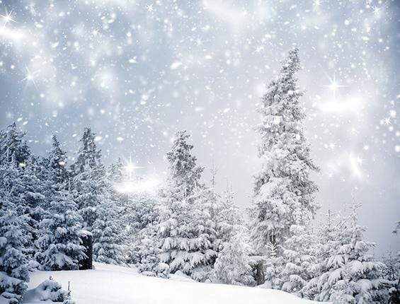 Katebackdrop:Kate Christmas Winter Wonderland With Trees Backdrop for Photography