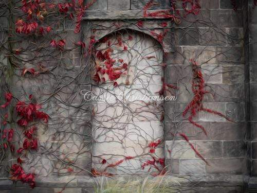 Katebackdrop:Kate Vinewall with Red Flowers Building Autumn Backdrop Designed by Cassie Christiansen Photography
