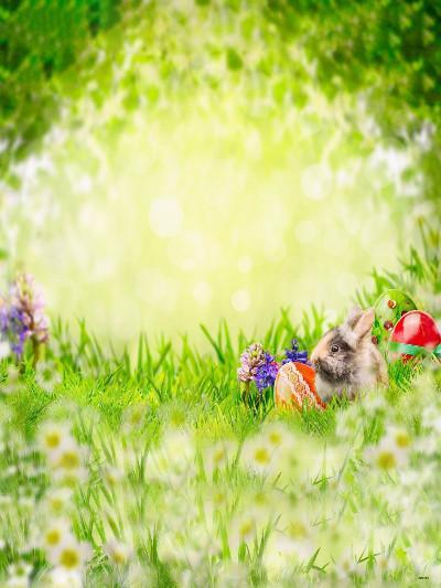 Katebackdrop:Kate Easter Children Green Grass Photography Backgrounds