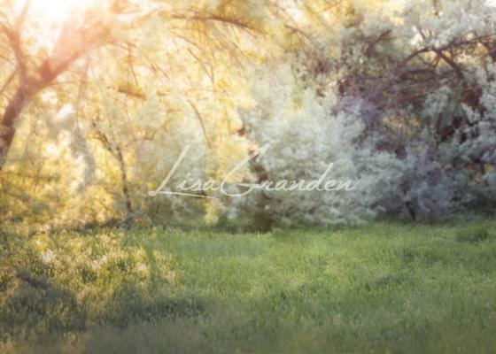 Katebackdrop:Kate Spring Park Lawn Backdrop for Photography Designed by Lisa Granden