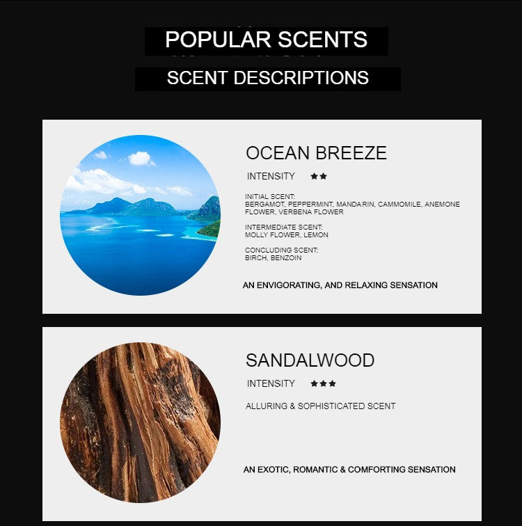 Ocean Breeze Reed Diffuser