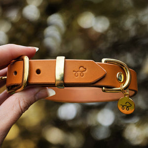 Raw Sienna - Leather dog collar with solid brass hardware