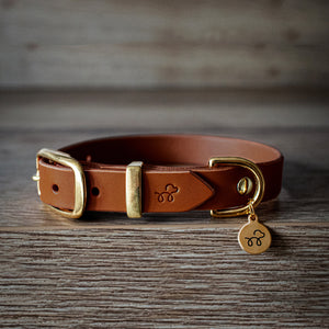 Acorn Brown - Leather dog collar with solid brass hardware