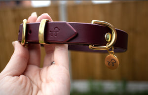 Beetroot burgundy - Leather dog collar with solid brass hardware