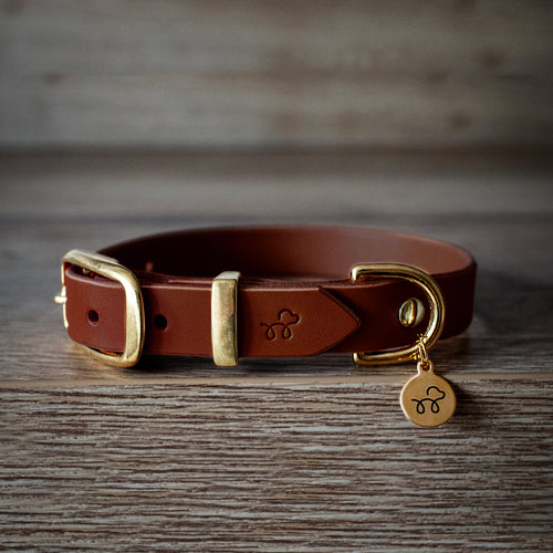 Chestnut Brown - Leather dog collar with solid brass hardware