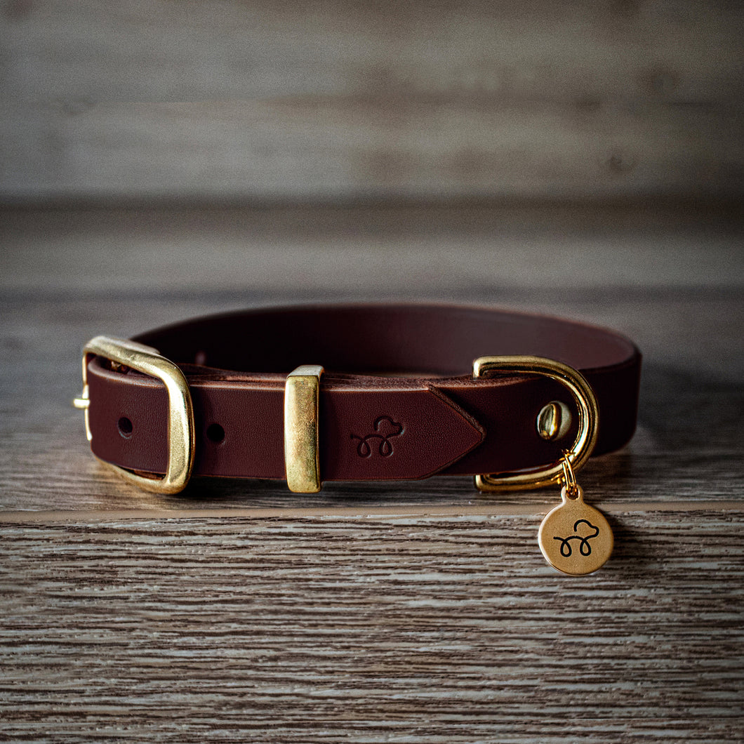 Conker Brown - Leather dog collar with solid brass hardware