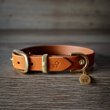 Load image into Gallery viewer, Raw Sienna - Leather dog collar with solid brass hardware