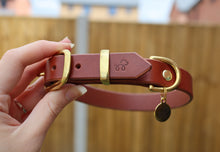 Load image into Gallery viewer, Chestnut Brown - Leather dog collar with solid brass hardware