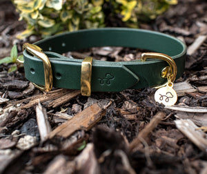 Forest Green - Leather dog collar with solid brass hardware