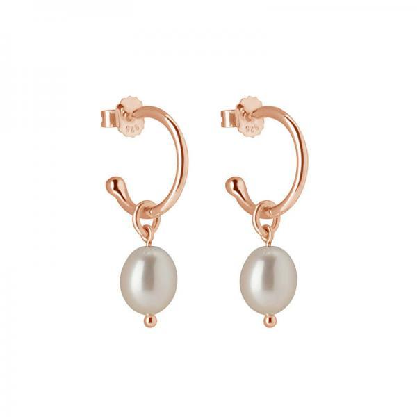 Petites Small Hoop With Pearl Drop Earrings In Rose Gold Plate