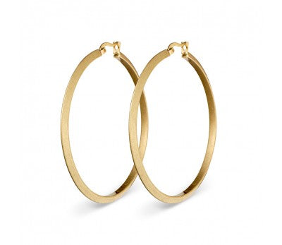 Stainless Steel Fashion Hoops