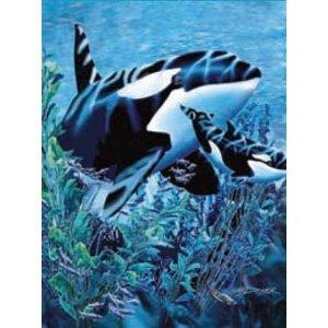 "Korean Soft Mink Blanket (QUEEN) | New Signature Collection Orcas Killer Whale, 79""X95"" - EverydaySpecial"