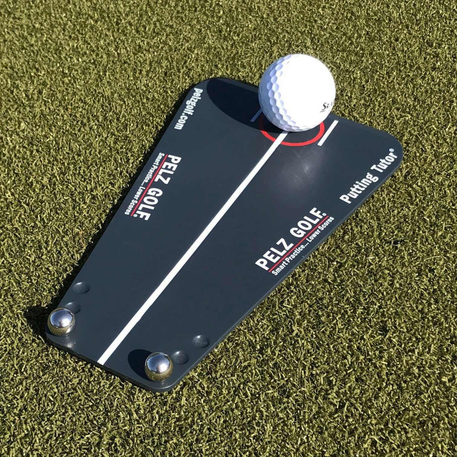 Dave Pelz's Putting Tutor