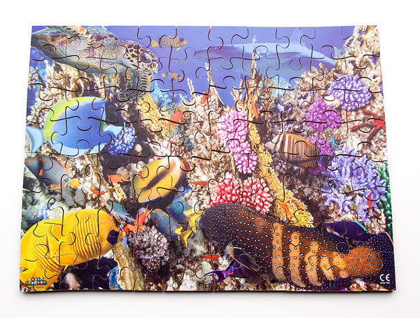 Coral Reef 24 or 80 pieces - JJ670