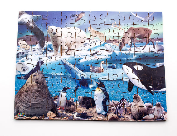 Polar Regions 24 or 80 pieces - JJ671