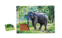 Endangered Animals - Asian Elephant - JJ740
