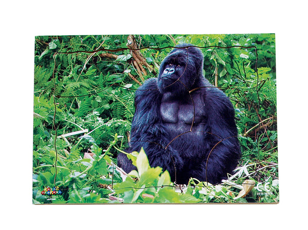 Endangered Animals - Gorilla   - JJ743
