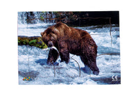 Endangered Animals - Grizzly Bear - JJ744