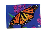 Endangered Animals - Monarch Butterfly - JJ748