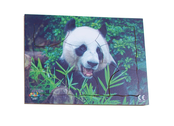 Endangered Animals - Panda - JJ751