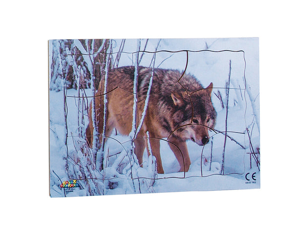 Endangered Animals - Red Wolf - JJ754
