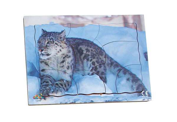 Endangered Animals - Snow Leopard - JJ756