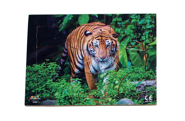Endangered Animals - Tiger - JJ757