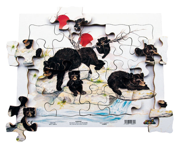 20pc Tray - Bears - JJ810