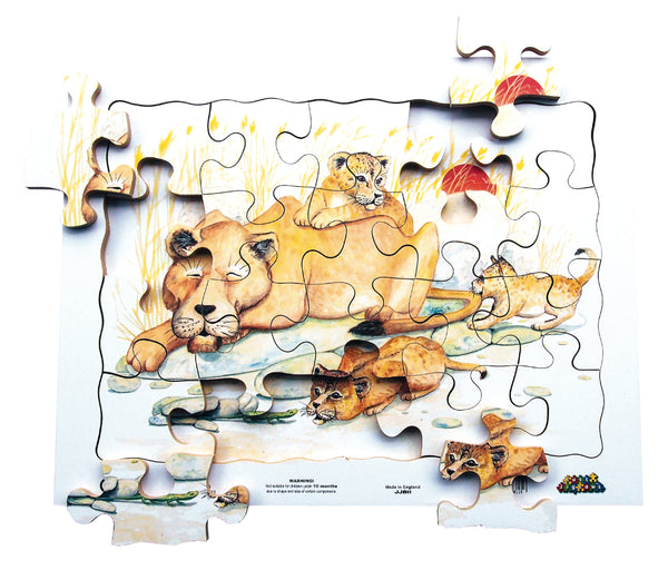 20pc Tray - Lions - JJ811